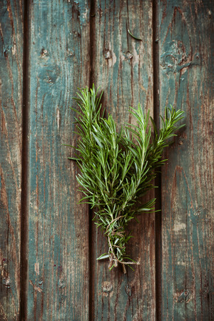 Fresh herbs. Rosemary in rustic setting. Garden herbs