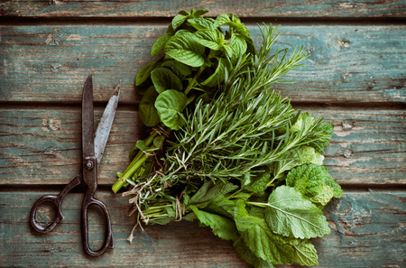 and organic: Fresh herbs. Melissa, rosemary and mint in rustic setting Stock Photo