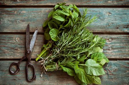 madera r�stica: Las hierbas frescas. Melissa, el romero y la menta en un entorno r�stico