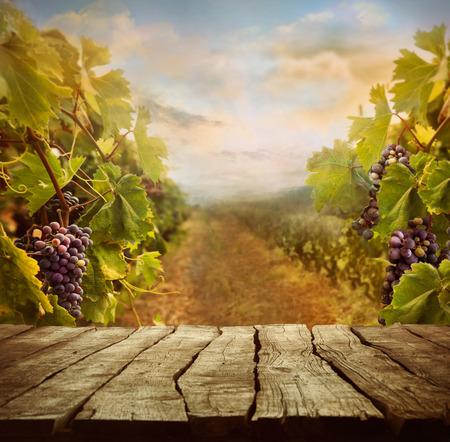 Vineyard tabletop design with vineyard and empty display Foto de archivo