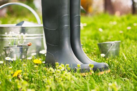water in can: Spring garden. Water can with garden boots and pots. Spring grass with flowers