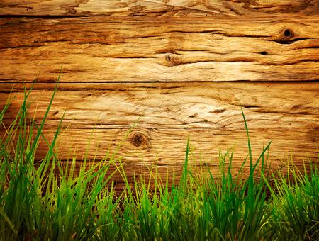 Voorjaar gras achtergrond. Gras over hout. Natuur achtergrond met gras en hout Stockfoto