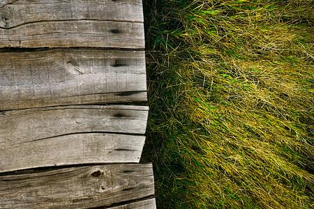 Wood background.  Grass background. Grass over wood. Nature background with grass and wood photo