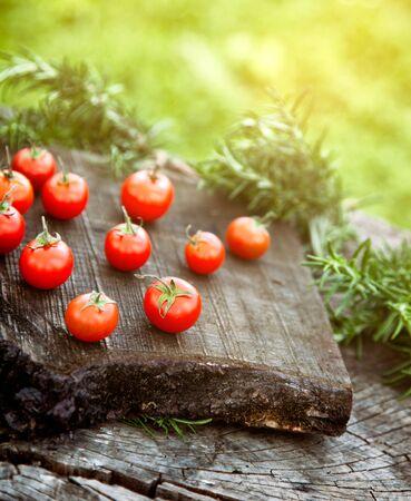 tomate de arbol: Tomates cherry con romero en la madera en el jardín vegetal