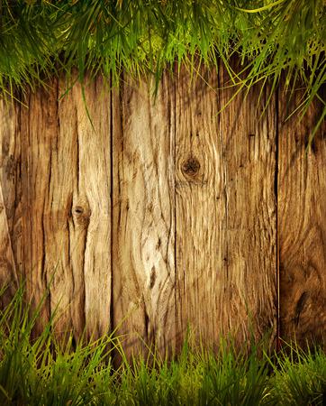 봄 잔디 배경입니다. 나무 위에 잔디. 잔디와 나무와 자연 배경