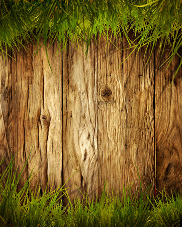 Spring grass background. Grass over wood. Nature background with grass and wood
