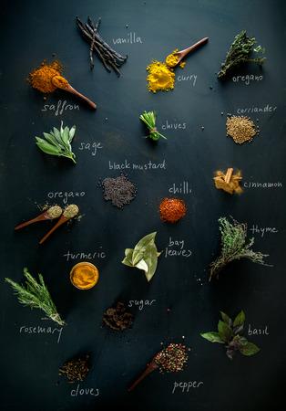 especias: Especias y hierbas. Variedad de especias y hierbas mediterráneas. Especias con nombres Foto de archivo