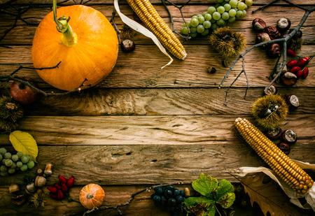 Autumn fruit background. Autumn Thanksgiving seasonal fruit. Nature background