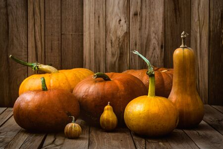 eating dinner: Thanksgiving concept. Pumpkins on old wood. Autumn fruit
