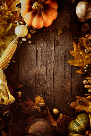 Thanksgiving background. Autumn fruit with Thanksgiving letters. Thanksgiving dinner 版權商用圖片 - 46774821
