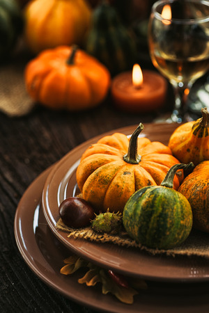 fall harvest: Autumn table setting with pumpkins.  Thanksgiving dinner and autumn decoration.