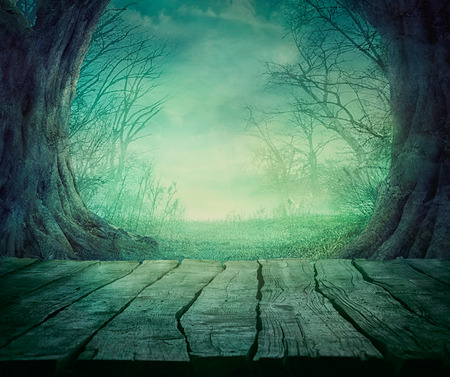 Halloween background. Spooky forest with dead trees and wooden table. Wood table