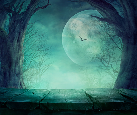 fear: Halloween background. Spooky forest with full moon and wooden table Stock Photo