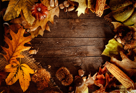 table decorations: Thanksgiving dinner. Autumn fruit on wood with copyspace. Thanksgiving autumn background Stock Photo