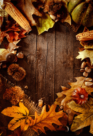 Thanksgiving dinner. Autumn fruit on wood with copyspace. Thanksgiving autumn background Imagens