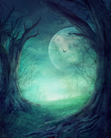 mystery woods: Halloween design - Spooky tree. Horror background with autumn valley with woods, spooky tree and full moon. Space for your Halloween holiday text.