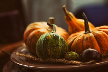 호박 설정 가을 테이블. 추수 감사절 저녁 식사와 가을 장식.