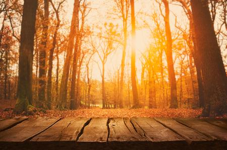木製のテーブル。森と空の表示で落ちる葉と秋のデザイン。あなたのモンタージュのためのスペース。シーズン秋背景 写真素材 - 46775034
