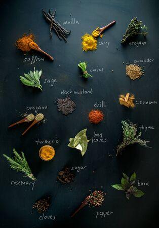 cebollin: Especias y hierbas. Variedad de especias y hierbas mediterráneas. Especias con nombres Foto de archivo