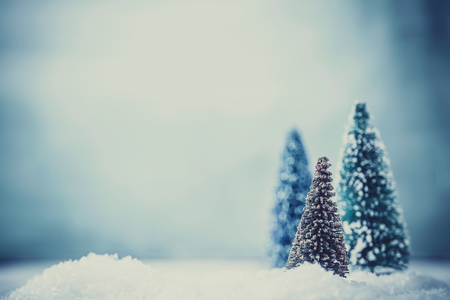 Christmas background. Xmas fir tree on snow. Greeting card
