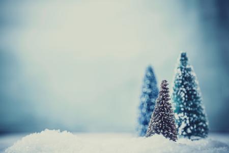Christmas background. Xmas fir tree on snow. Greeting card