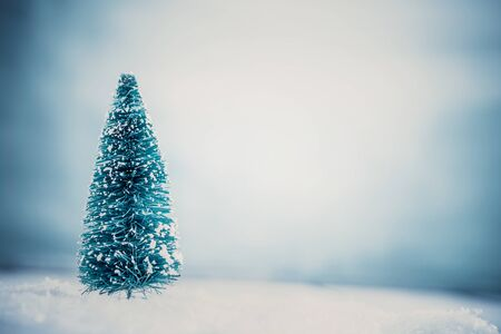 snow tree: Christmas background. Xmas fir tree on snow. Stock Photo