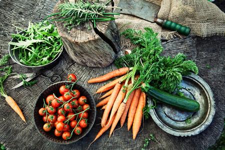 agricultor: Verduras orgánicas frescas. Fondo de alimentos. La comida sana desde el jardín