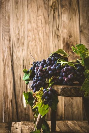 Fresh grapes on wood. Autumn fruit