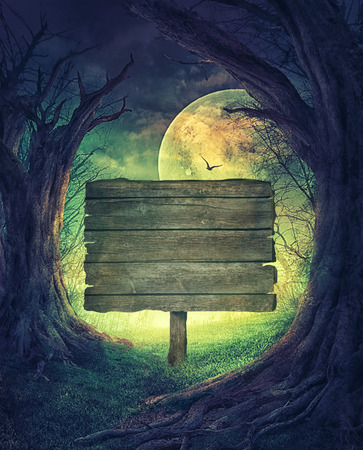 dark forest: Halloween design. Festive background with autumn valley with woods, spooky tree and full moon. Stock Photo