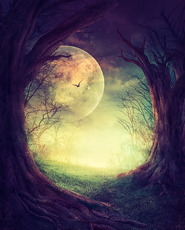 spooky tree: Halloween design. Festive background with autumn valley with woods, spooky tree and full moon. Stock Photo