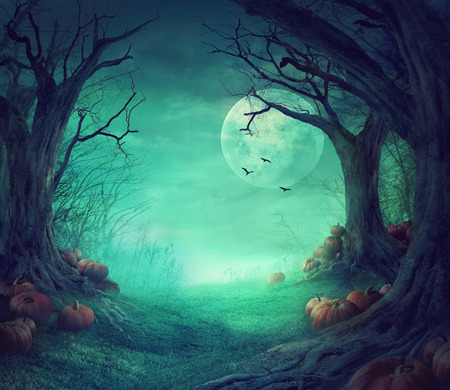 Halloween background. Spooky forest with dead trees and pumpkins. Halloween design with pumpkins