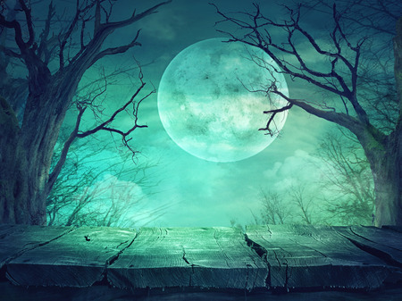 spooky forest: Halloween background. Spooky forest with full moon and wooden table Stock Photo