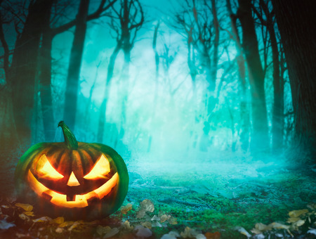 spooky forest: Halloween background. Spooky forest with dead trees and pumpkin.Halloween design with pumpkin Stock Photo