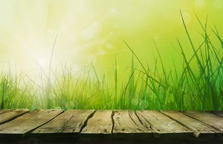 green flowers: Spring grass. Blur background. Summer nature. Bokeh blurred background.Wooden table. Wood planks Stock Photo