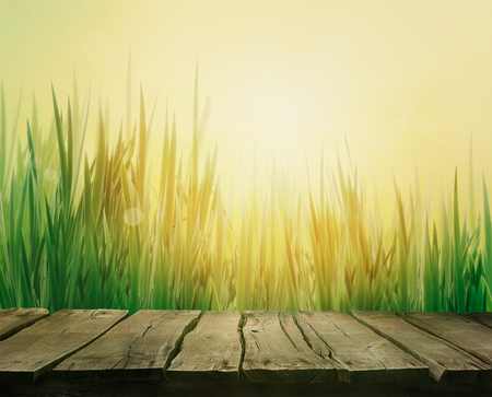 wood grass: Spring grass. Blur background. Summer nature. Bokeh blurred background.Wooden table. Wood planks Stock Photo
