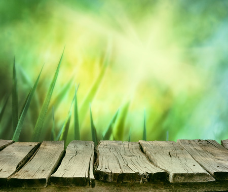 wood grass: Spring background. Spring grass. Blur background. Summer nature. Bokeh blurred background.Wooden table. Wood planksGrass  with copyspace. Floral background .Nature bokeh
