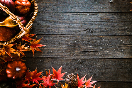 Autumn leaves. Fall red leaves on wood. Nature background