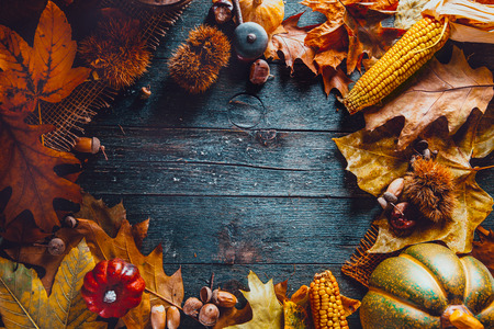 Thanksgiving day dinner. Autumn fruit  and leaves. Thanksgiving autumn background