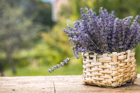 Lavender background. Lavender flower bunch on wood. Floral background Imagens