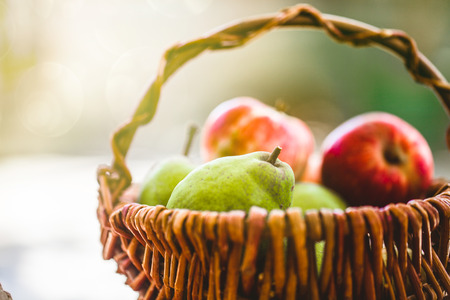 Fresh apples and pears on wood. Fresh organic fruit. Red apples