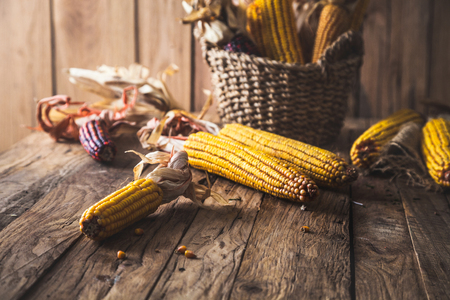Autumn fruit with corn on wood. Thanksgiving autumn background Stock Photo