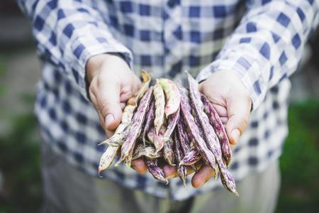 Farmer with beans