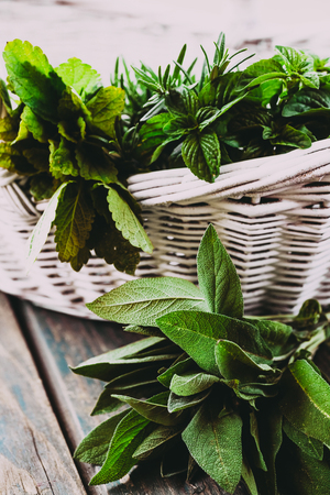 Fresh herbs. Melissa, rosemary and mint in rustic setting. Spices on wood