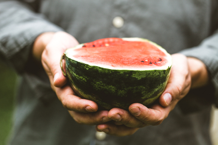 Summer fruit. Farmers hands with fresh watermelon