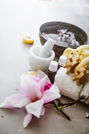 Spa natural concept. Dayspa cosmetics products. Spa and wellness setting. Reklamní fotografie