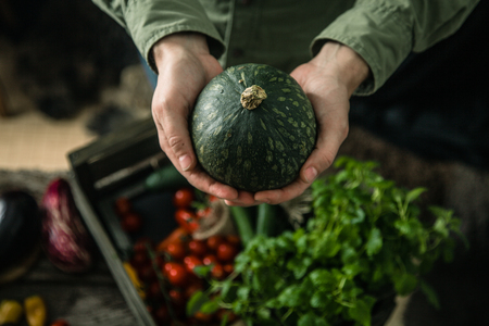 Organic vegetables on wood. Farmer holding harvested vegetables. Rustic setting with pumpkin