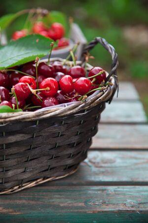Fresh forest fruit on wood. Fresh organic fruit. Red cherries, blueberries and blackberries 스톡 콘텐츠