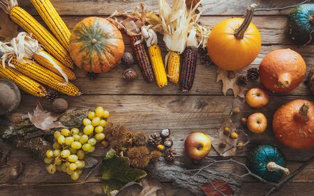 Thanksgiving day.  Autumn fruit over wood.Thanksgiving autumn background Standard-Bild