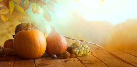 Thanksgiving day. Nature background with autumn fruit on table.