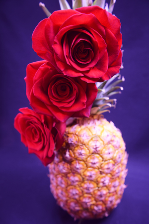Fancy ananas Banque d'images - 50924121